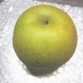 甘くない梨